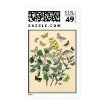 Vintage 1870 French Butterflies Postage Stamps