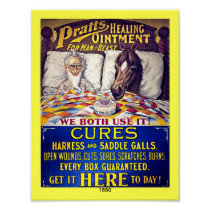 Vintage 1880 Horse Liniment: Pratts Horse Ointment Poster