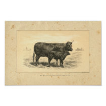 Vintage 1888 Cow with Calf Print