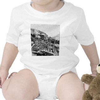 Vintage 1889 de la ruina del tren de la inundación traje de bebé