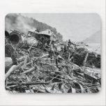 Vintage 1889 de la ruina del tren de la inundación alfombrillas de raton