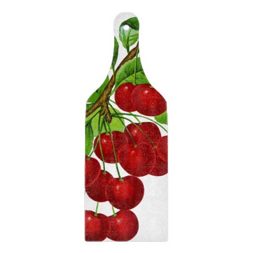 Vintage 1899 illustration: ripe red cherries cutting board
