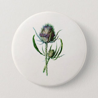 Vintage 1902 Old Scottish Thistle Wild Flower Button