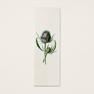 Vintage 1902 Old Scottish Thistle Wild Flower Mini Business Card