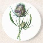 Vintage 1902 Scottish Thistle Antique Wild Flower Drink Coaster