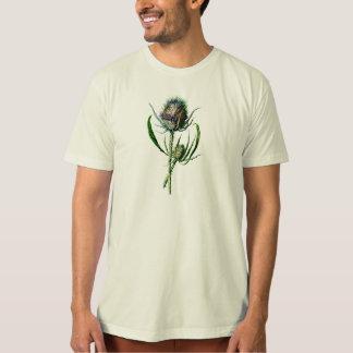 Vintage 1902 Scottish Thistle Antique Wild Flower T-Shirt