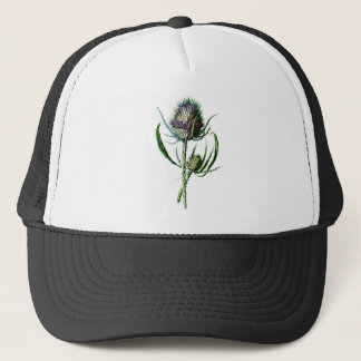 Vintage 1902 Scottish Thistle Antique Wild Flower Trucker Hat
