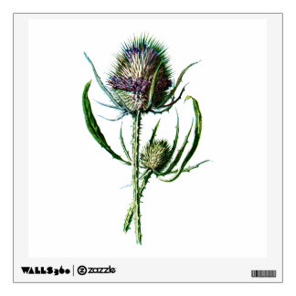 Vintage 1902 Scottish Thistle Antique Wild Flower Wall Decal