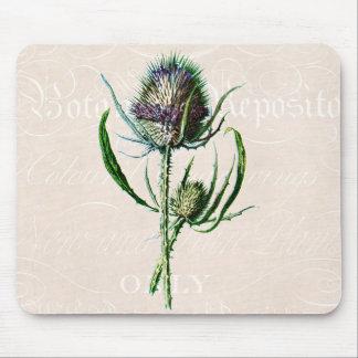 Vintage 1902 Scottish Thistle Old Wild Flower Mouse Pad