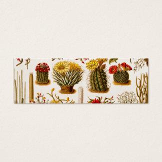 Vintage 1911 Cactus Flower Old Floral Illustration Mini Business Card