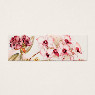 Vintage 1911 Orchid Pink Flower Old Illustration Mini Business Card