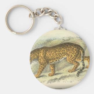 vintage 19th century jaguar illustration keychain
