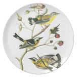 Vintage-3 birds on a branch-plate