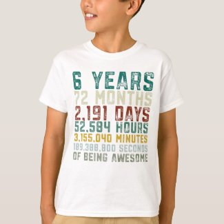 Vintage 6 Years Old 6th Birthday Boy Anniversary T-Shirt