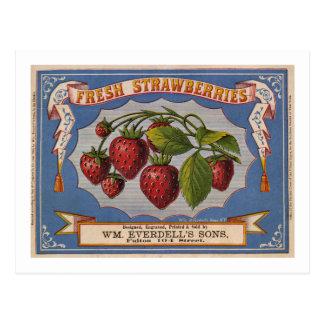 Vintage Ad for Fresh Strawberries circa 1868 Postcard