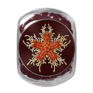 Vintage adaptable Haeckel Jarrones Cristal