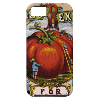 Vintage Advertisement Ripe red tomatoes iPhone SE/5/5s Case