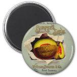 Vintage Advertising Victorian Cantaloupe Fruit Fridge Magnet