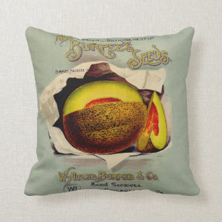 Vintage Advertising Victorian Cantaloupe Fruit Pillow