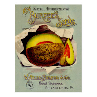 Vintage Advertising Victorian Cantaloupe Fruit Postcard
