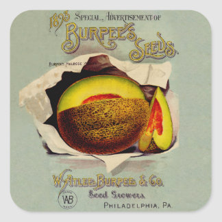 Vintage Advertising Victorian Cantaloupe Fruit Square Sticker