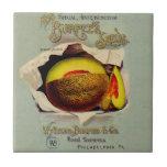 Vintage Advertising Victorian Cantaloupe Fruit Ceramic Tile