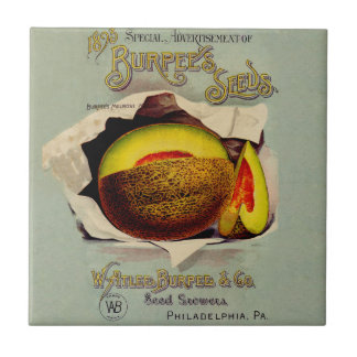 Vintage Advertising Victorian Cantaloupe Fruit Small Square Tile
