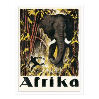 Vintage Africa Postcard