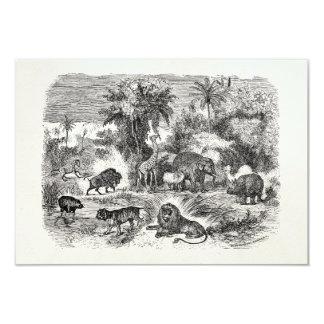 Vintage African Animals Giraffe Elephant Lion Hog Card