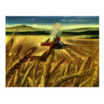Vintage Agricultural Business, Wheat Farming Farm Postcards
