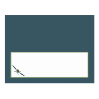 Vintage Airplane Baby Shower Writable Place Card