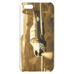 Vintage Airplane iPhone 5C Covers