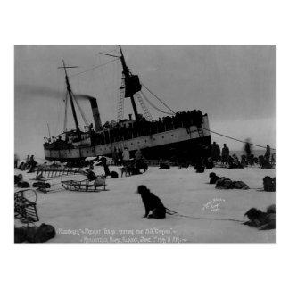 Vintage Alaska Tarjeta Postal