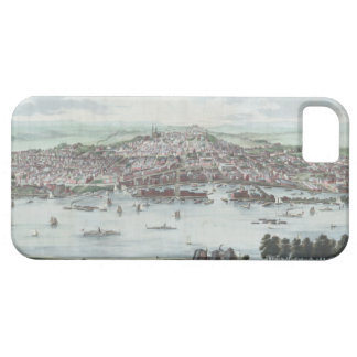 Vintage Albany Cover For iPhone 5/5S