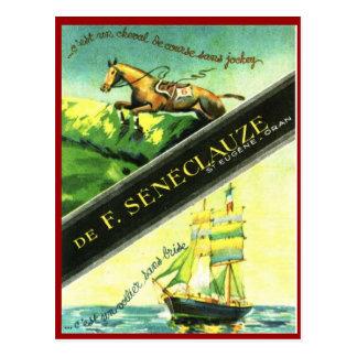 Vintage Algerian Wine, Seneclauze, Oran Postcard