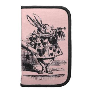 Vintage Alice in Wonderland Folio Planners
