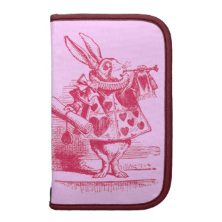 Vintage Alice in Wonderland Organizer