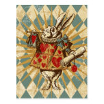 Vintage Alice White Rabbit Postcard