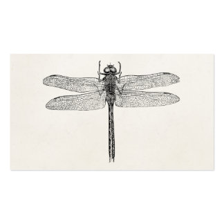 Vintage American Dragonfly Dragon Fly Template Double-Sided Standard Business Cards (Pack Of 100)