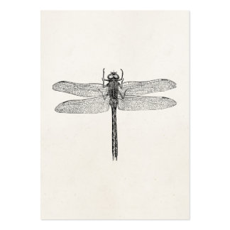 Vintage American Dragonfly Dragon Fly Template Large Business Cards (Pack Of 100)