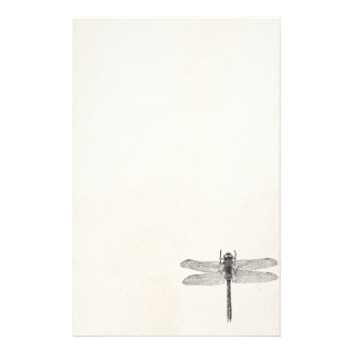Vintage American Dragonfly Dragon Fly Template Stationery