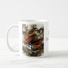 Vintage American Red Crossbill Birds Winter Pine Coffee Mug at Zazzle