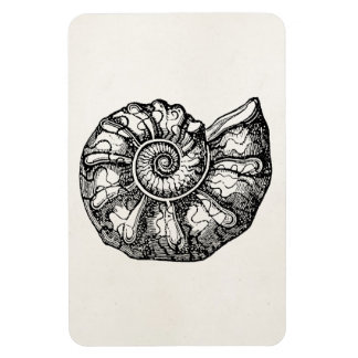 Vintage Ammonite Seashell Fossil Shell Template Magnet