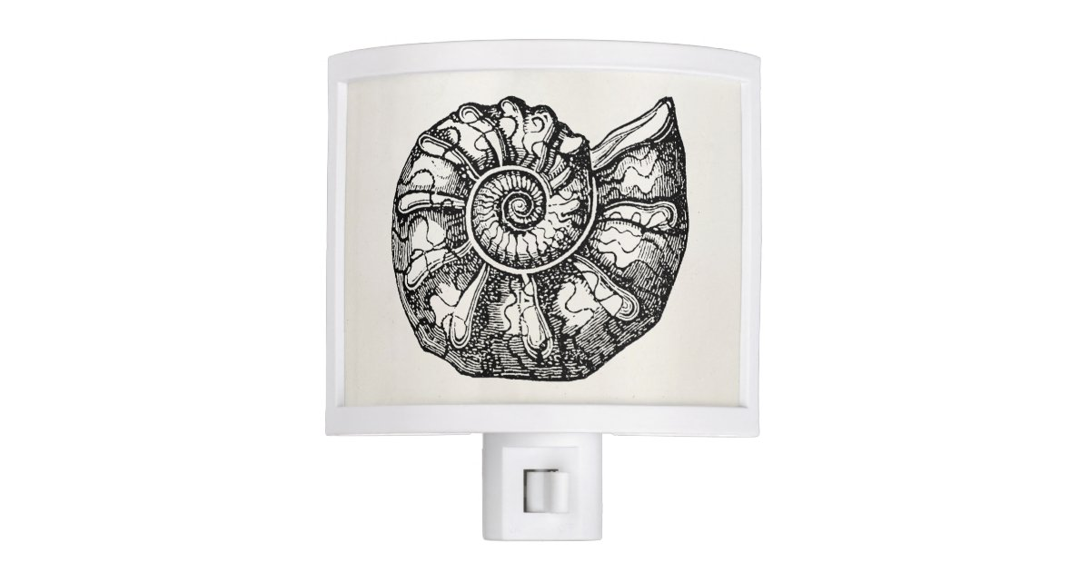 vintage ammonite seashell fossil shell template night light zazzlecom