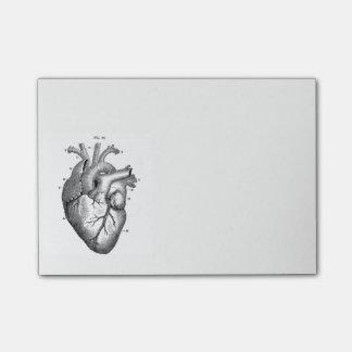 Vintage Anatomical Drawing Human Heart Post-it Notes