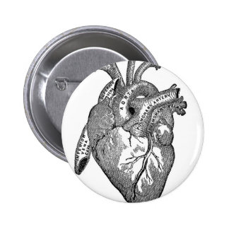 Vintage Anatomical Heart Pins