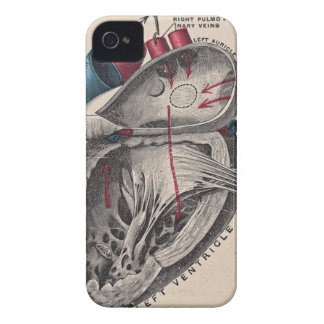 Vintage Anatomical Heart iPhone 4 Case-Mate Cases