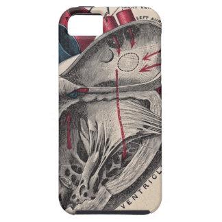 Vintage Anatomical Heart iPhone SE/5/5s Case