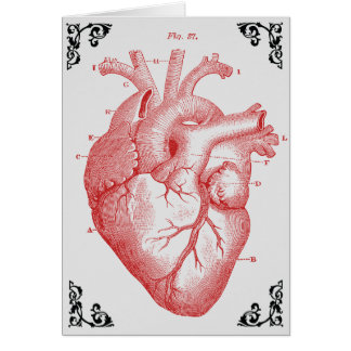 Vintage Anatomical Heart Victorian Greeting Card