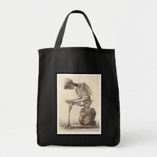 Vintage Anatomical Skeleton Tote Bag